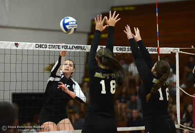 Camryn Rocha, left, spikes the ball against Butte College players Jessica Curl (18) and Courtney Holloway (16) as Chico State plays in a scrimmage against Butte College on Saturday, Aug. 20, 2016, at Acker Gym in Chico, California. (Dan Reidel -- Enterprise-Record)
