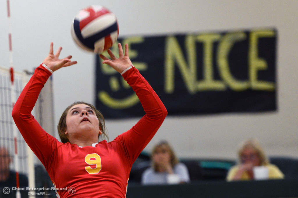 . Chico High\'s #9 Tiffani Kelly sets the ball against Paradise High in the second game of their girls volleyball match at PHS Thursday, October 10, 2013 in Paradise, Calif.  (Jason Halley/Chico Enterprise-Record)