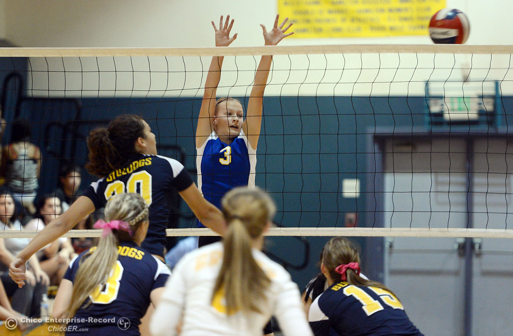 . Hamilton High\'s #3 Kendra Gordon (right) is unable to block a spike against Gridley High\'s #20 Haylee Coats (left) in their first game of their volleyball match Thursday, August 29, 2013 in Chico, Calif.  (Jason Halley/Chico Enterprise-Record)