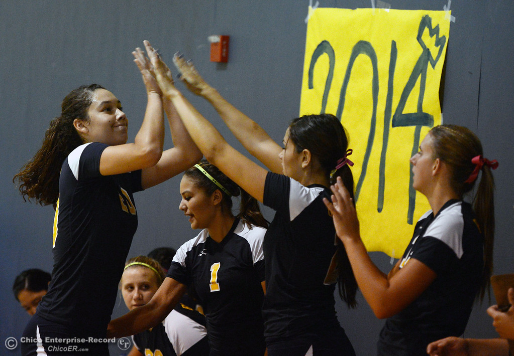. Hamilton High against Gridley High\'s #20 Haylee Coats (left) high-fives her team in their first game of their volleyball match Thursday, August 29, 2013 in Chico, Calif.  (Jason Halley/Chico Enterprise-Record)