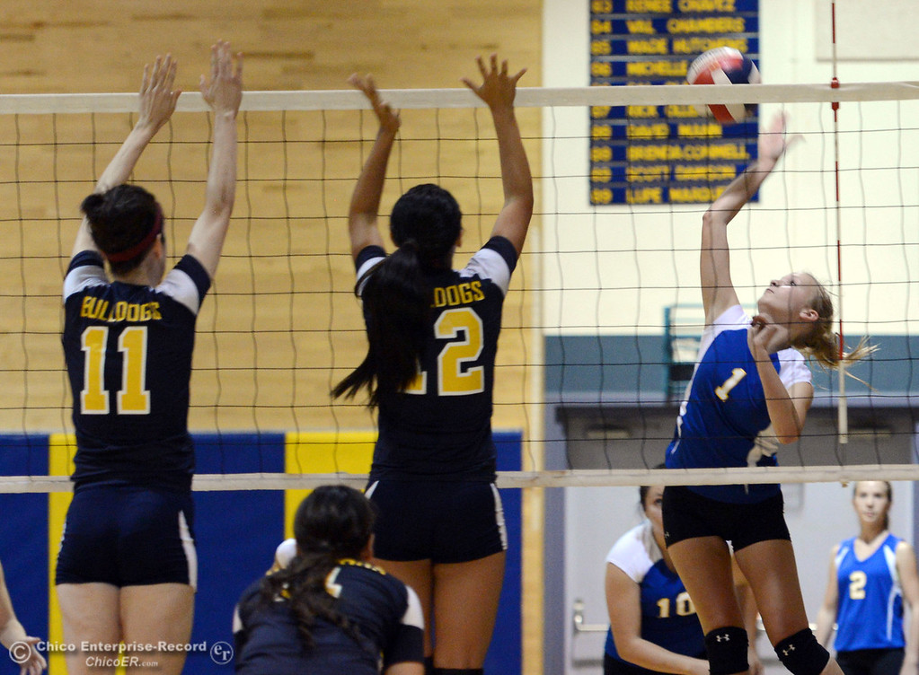 . Hamilton High\'s #1 Nicole Gordon (right) spikes against Gridley High\'s #12 Lauren Solis (center) and #11 Elizabeth Osbourn (left) in their first game of their volleyball match Thursday, August 29, 2013 in Chico, Calif.  (Jason Halley/Chico Enterprise-Record)