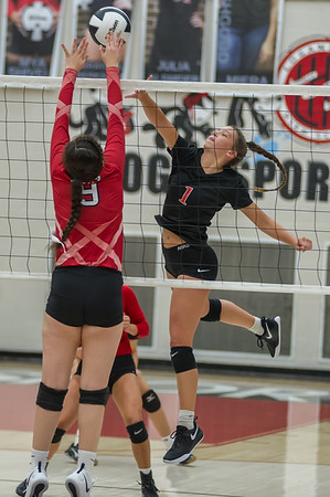 Logansport senior Allie McClure (1) puts a little spin on the ball to push it over the net as the Lady Berries defeated the Lady Redskins of Knox in four sets on Wednesday night. Fran Ruchalski | Pharos-Tribune