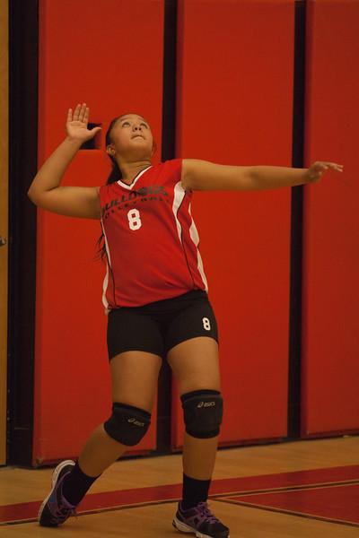 Mesa linda bulldogs volleyball 2013
