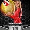 Milan Banner 13 Wallace 3x4