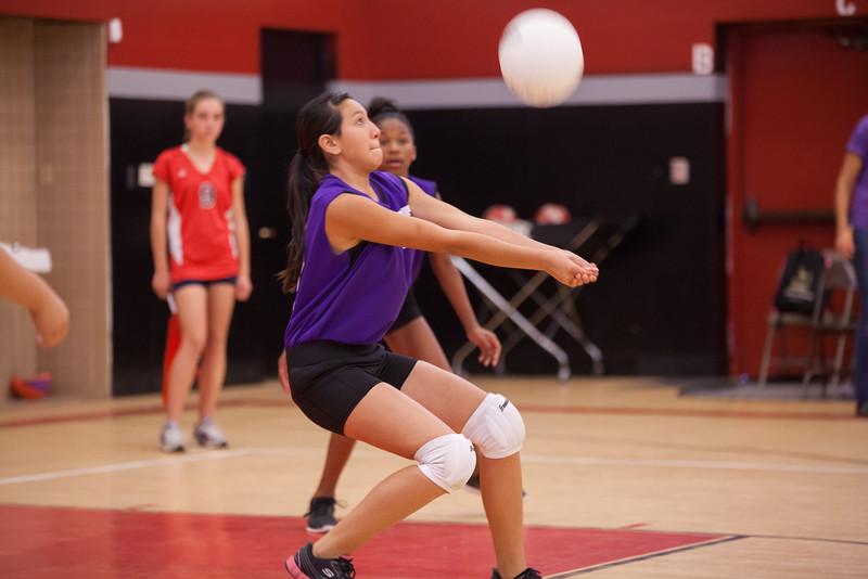 Quail Valley jv, var. volleyball 2013