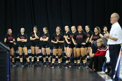 Volleyball Team Sideline
