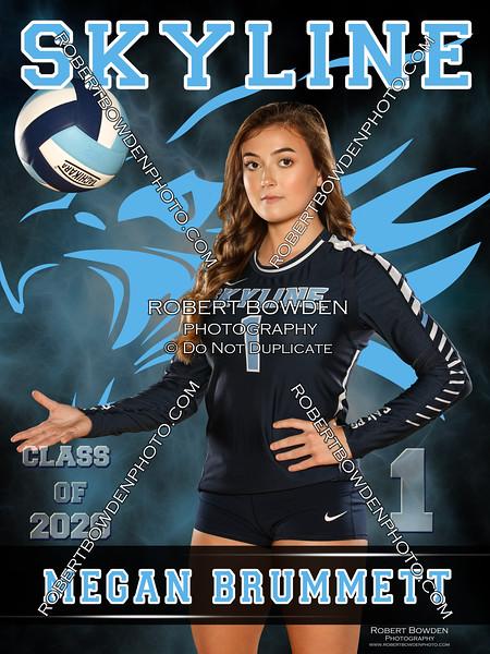 2019 Skyline Volleyball Banner 1 Megan Brummett