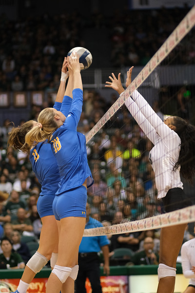 UCLA blockers Savvy Simo (11) and Tristin Savage (18) joust at the net against Hawaii's Skyler Williams in the championship match of the Outrigger Hotels and Resorts Volleyball Challenge at the Stan Sheriff Center, Honolulu, Hawaii on September 14 2019.