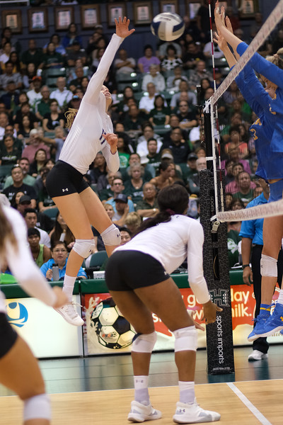 Hawaii hitter Hanna Hellvig hits high hands in the championship match against UCLA in the Outrigger Hotels and Resorts Volleyball Challenge at the Stan Sheriff Center, Honolulu, Hawaii on September 14, 2019.