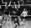 Stanford's Alix Klineman hits it past UW's Bianca Rowland and Kindra Carlson