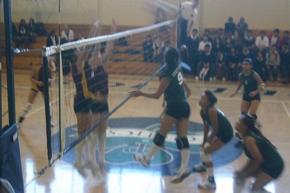 Volleyball 2009