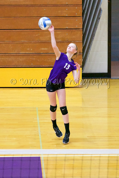 '15 WMS Volleyball 54