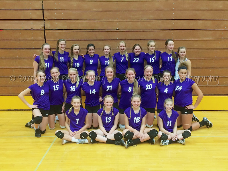 '15 WMS Volleyball 113 (1)