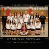 VolleyballTeam16x20 copy