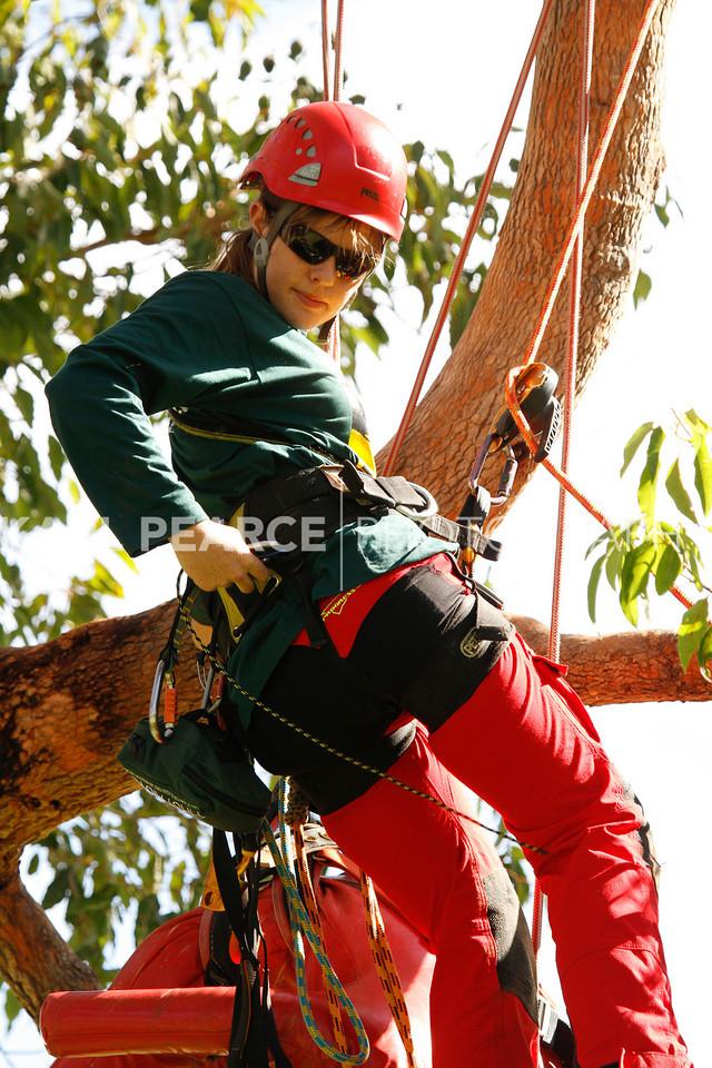 WATCC-2011-Prelims-00810