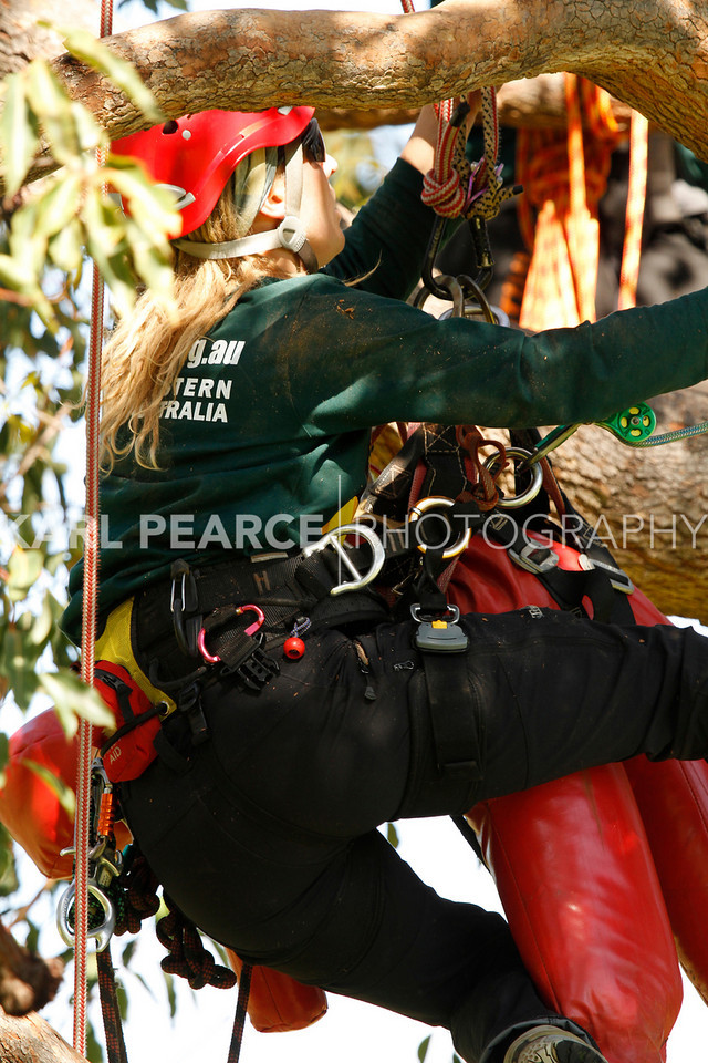 WATCC-2011-Prelims-01185