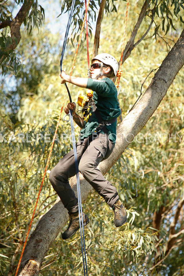 WATCC-2011-Prelims-01327