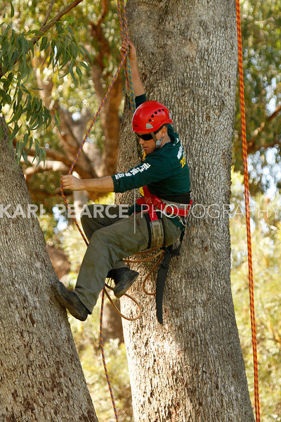 WATCC-2011-Prelims-00867