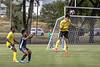 soccer-3596