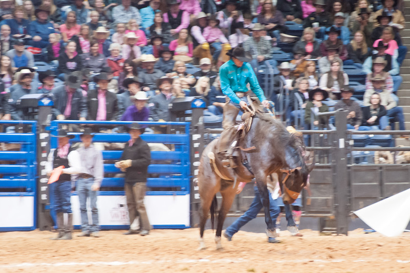 Shaie Williams for AGN Media. 20th year World Championship Ranch Rodeo  held at the Amarillo Civic Center in Amarillo, TX on November 13, 2015.