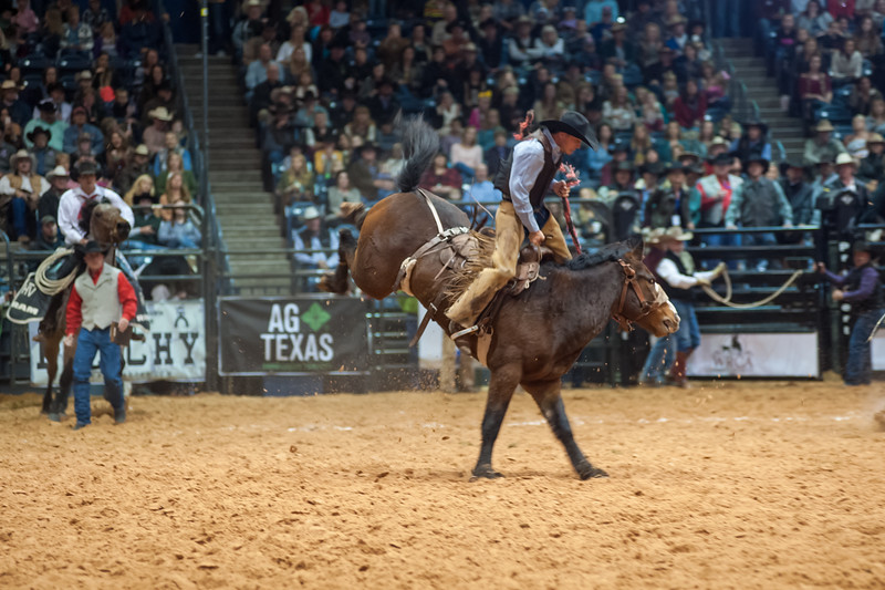 Photo by Shaie Williams. WRCA 21st World Championship Ranch Rodeo  held at Amarillo Civic Center  in Amarillo, TX  on November 13, 2016.