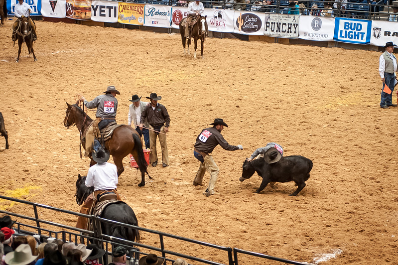 Shaie Williams for Working Ranch Magazine. Jesse Jolly brings a calf to the fire while Kyle Spitz and Phy Lord flank and Nick Peterson brands during the Team Branding at the WRCA 21st World Championship Ranch Rodeo  held at Amarillo Civic Center  in Amarillo, TX  on November 13, 2016.