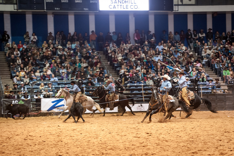 Shaie Williams for Working Ranch Magazine. Sandhill Cattle Co Trip Townsend heads the first stray during the Stray Gathering at the WRCA 21st World Championship Ranch Rodeo  held at Amarillo Civic Center  in Amarillo, TX  on November 12, 2016.