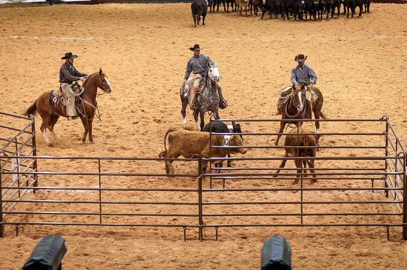 Shaie Williams for Working Ranch Magazine. Nick Peterson, Phy Lord and Gilbert Cruz from the Jolly Ranch and S & L Cattle team during the Team Penning at the WRCA 21st World Championship Ranch Rodeo  held at Amarillo Civic Center  in Amarillo, TX  on November 13, 2016.