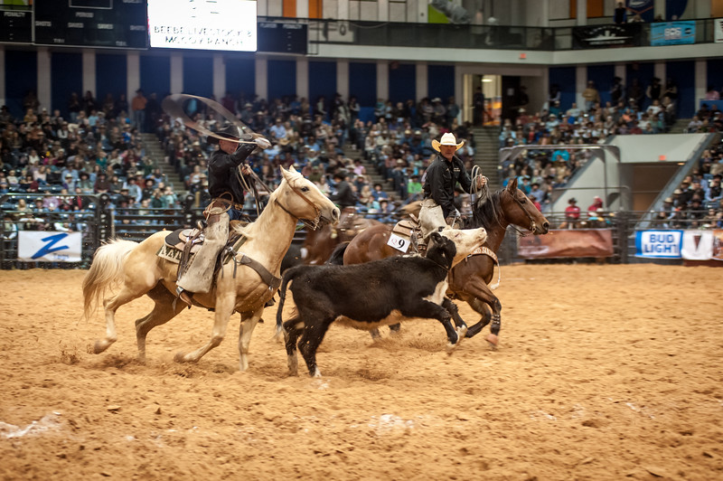 Shaie Williams for Working Ranch Magazine. Beebe Livestock & McCoy Ranch during the Stray Gathering at the WRCA 21st World Championship Ranch Rodeo  held at Amarillo Civic Center  in Amarillo, TX  on November 12, 2016.