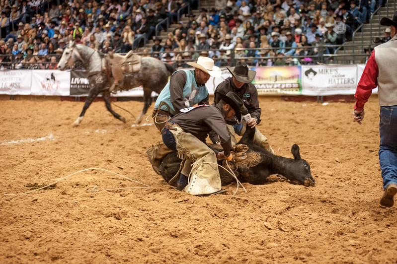 Shaie Williams for Working Ranch Magazine. Nick Peterson, Dustin Bowling and Jesse Jolly tie one down during the Stray Gathering at the WRCA 21st World Championship Ranch Rodeo  held at Amarillo Civic Center  in Amarillo, TX  on November 12, 2016.