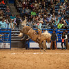 Shaie Williams for Working Ranch Magazine.  Colten Mayo from the Burns Ranch scores a 83 on his brinc ride to lead the first night of the WRCA 22nd World Championship Ranch Rodeo held at Amarillo Civic Center  in Amarillo, TX on November 9, 2017.