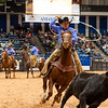 Shaie Williams for Working Ranch Magazine. Josh Lilley of Broken H Ranch and Hebb Cattle ropes a yearly during the stray gathering event at WRCA 22nd World Championship Ranch Rodeo held at Amarillo Civic Center  in Amarillo, TX on November 9, 2017.
