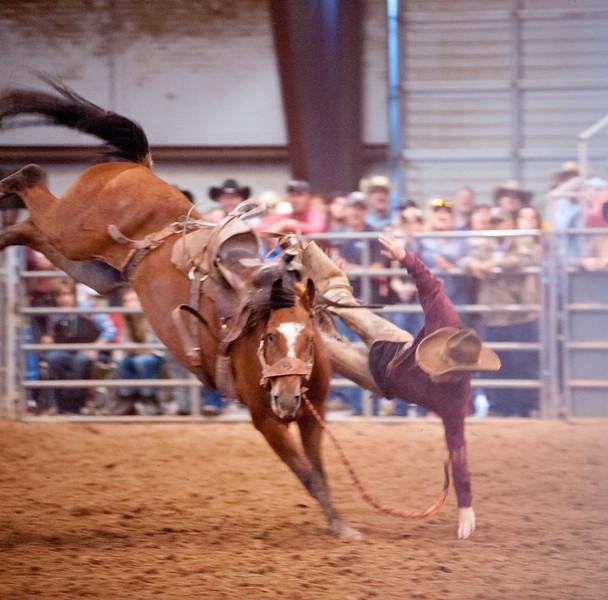 Bronc Riding33_20140524