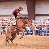 Bronc Riding29_20140524