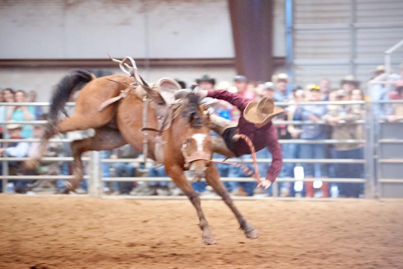Bronc Riding32_20140524