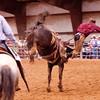 Bronc Riding56_20140524