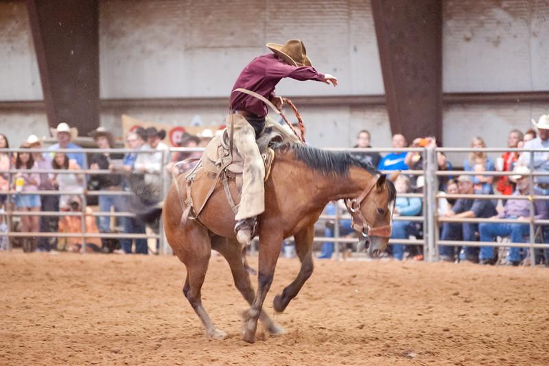 Bronc Riding28_20140524