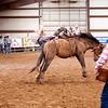 Bronc Riding40_20140524