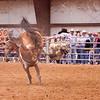 Bronc Riding44_20140524