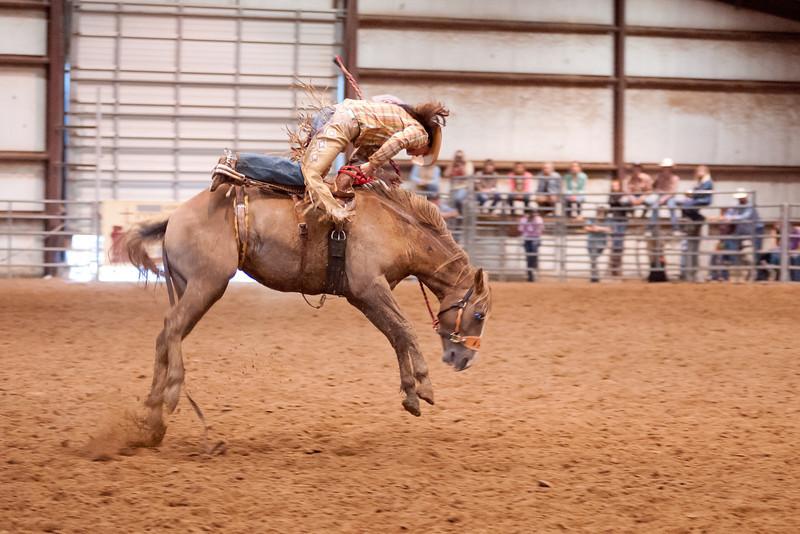 Bronc Riding41_20140524
