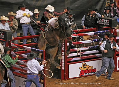 The shoot opens and the horse is airborne. Bareback Riding in the Waco, Texas Heart of Texas Colosseum. National Finals January 2012.