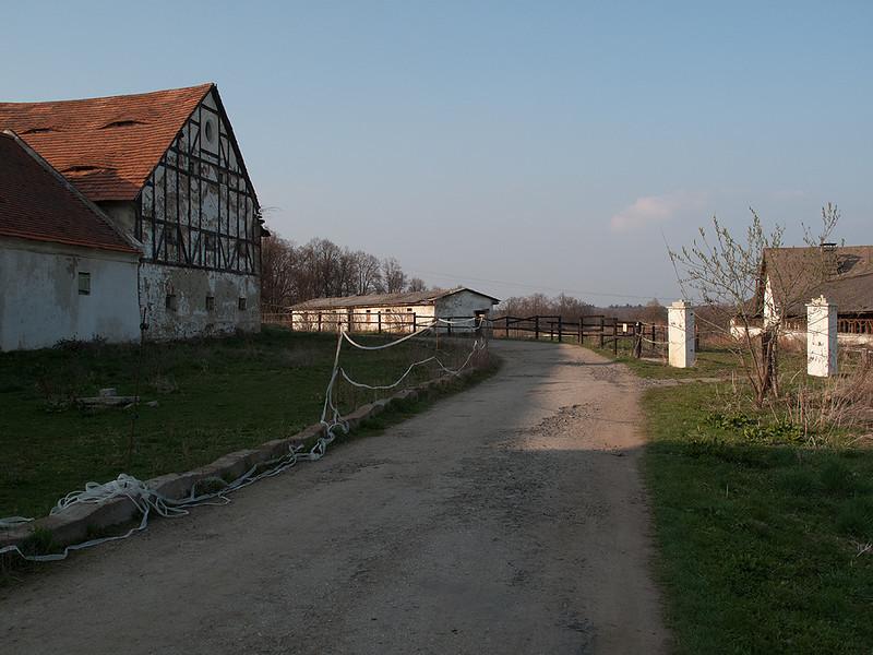IMG_9279
