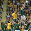 wallabies v springboks