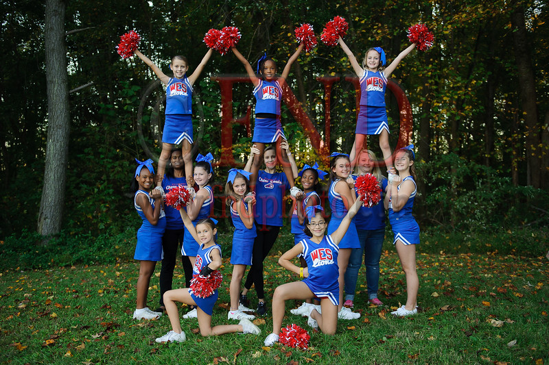 2015LittleLeagueCheer