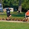 Warrior Dash 2012 Clays Park in Canal Fulton, Ohio 44614