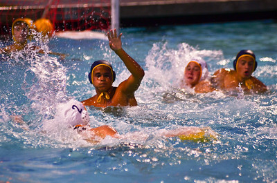 Davis Water Polo Scrimmage