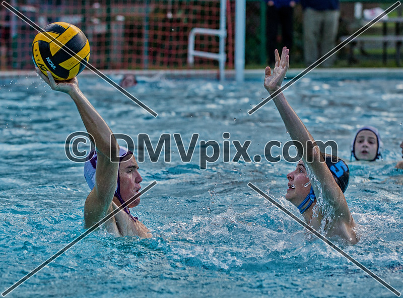 Whitman vs Gonzaga JV Water Polo (19 Oct 2014)