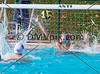 Whitman vs Gonzaga Varsity Water Polo (19 Oct 2014)