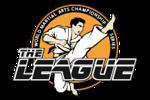 league_logo2