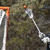 Lacrosse suspended 1